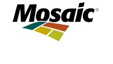 Mosaic apresenta lucro de US$ 828 milhões no 4º trimestre de 2020